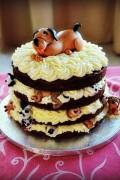 Becky Braunton's Doggie cake