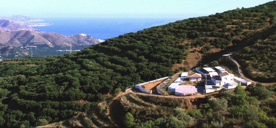 Valle Verde Animal Rescue y Cantalobos Pet Hotel