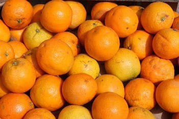 Close up on lots of oranges on a market stall