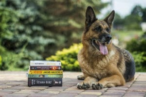 German shepherd next to a pile of paperback books