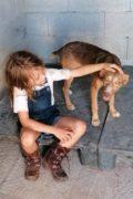 ADOPTAR: Lola- perra joven busca un hogar para siempre